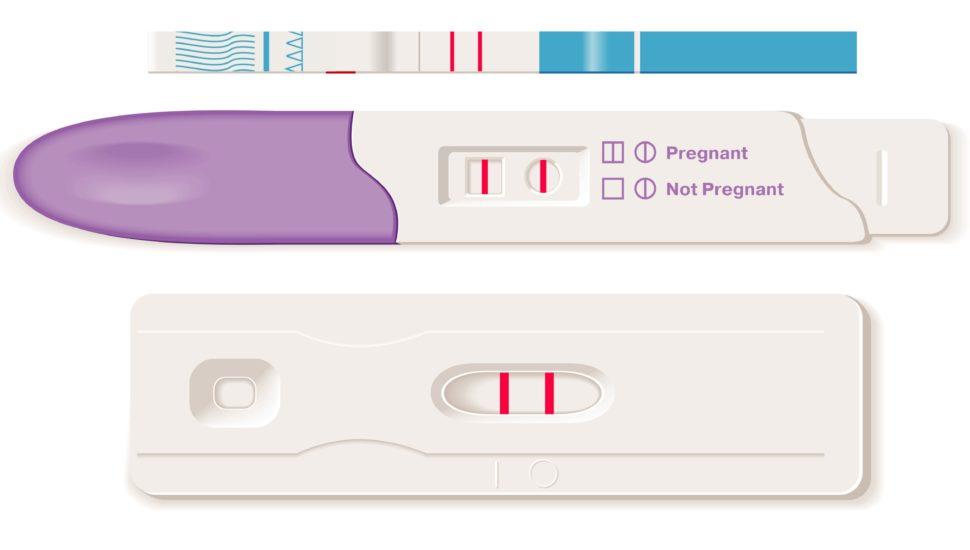 Test ciążowy – jak działa, jakie są rodzaje, jak go wykonać?